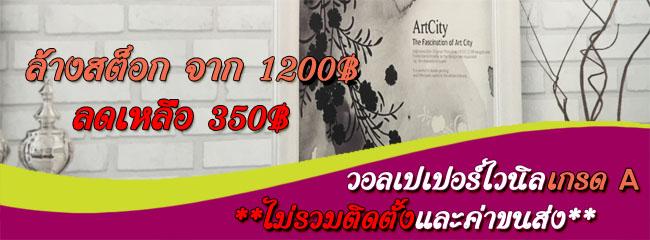 Banner-promotion1